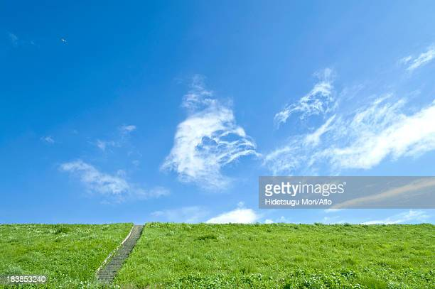 grassland and blue sky with clouds - flussufer stock-fotos und bilder