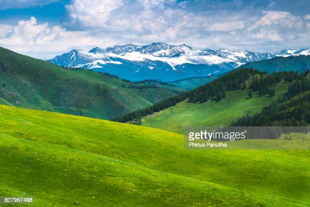 Grassland and mountain