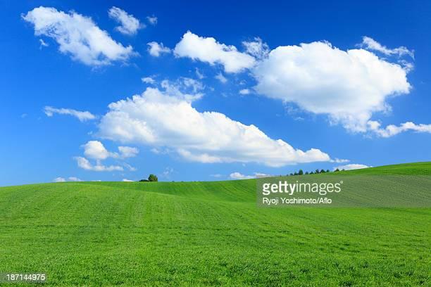 Grassland and sky, Hokkaido