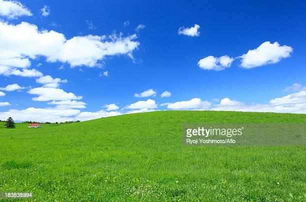 Grassland and sky with clouds, Hokkaido