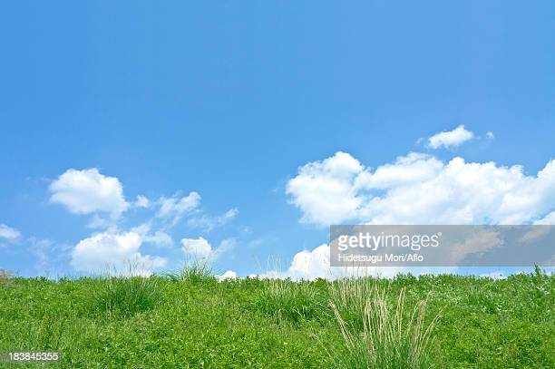 grassland and sky with clouds - riva del fiume foto e immagini stock