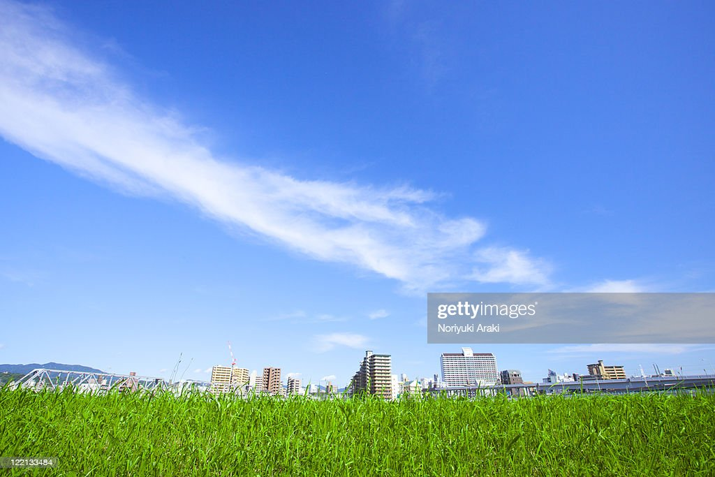 Grassland and town : Stock Photo
