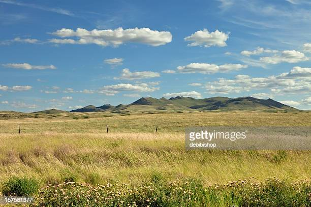 grassland, mountains & sky - prairie stock pictures, royalty-free photos & images