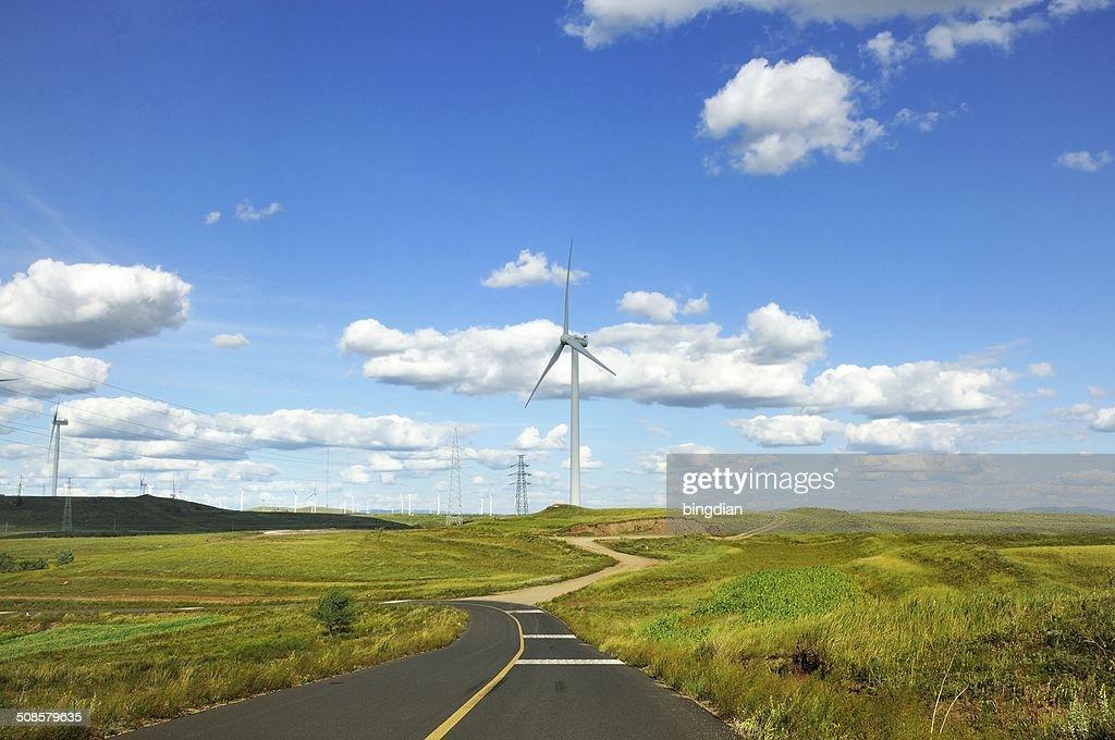 Grassland sur la route : Photo