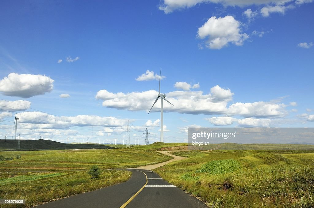 Grassland on theroad : Stock Photo