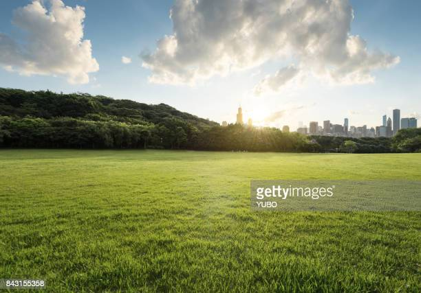 grassland - cook county illinois stock photos and pictures