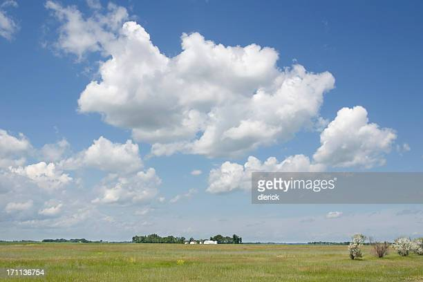 grassland prairie landscape with big sky