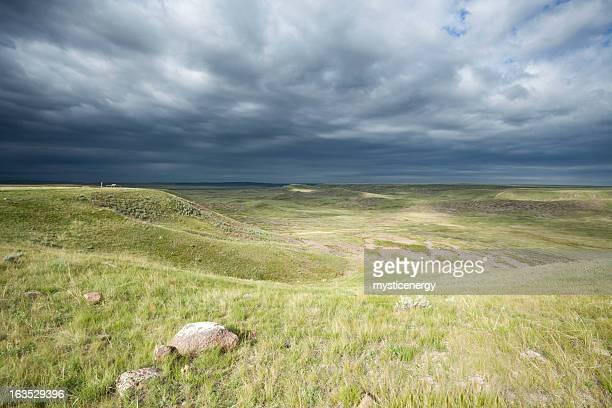 Grasslands 国立公園