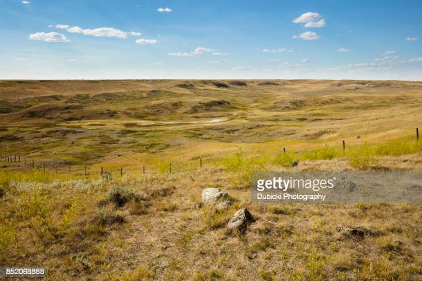 grasslands national park - canadian prairies stock photos and pictures