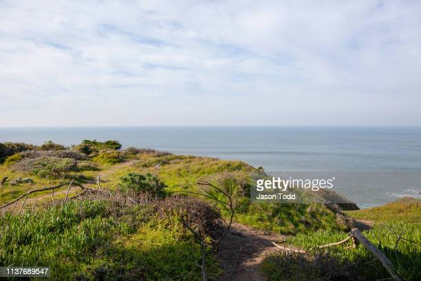 grassy coastal ocean overlook - jason todd stock photos and pictures