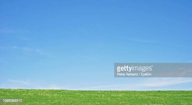 grassy field against blue sky - horizon over land stockfoto's en -beelden