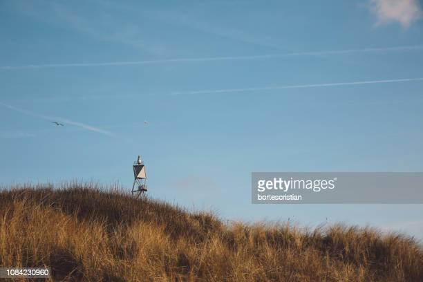 grassy field against blue sky - bortes fotografías e imágenes de stock