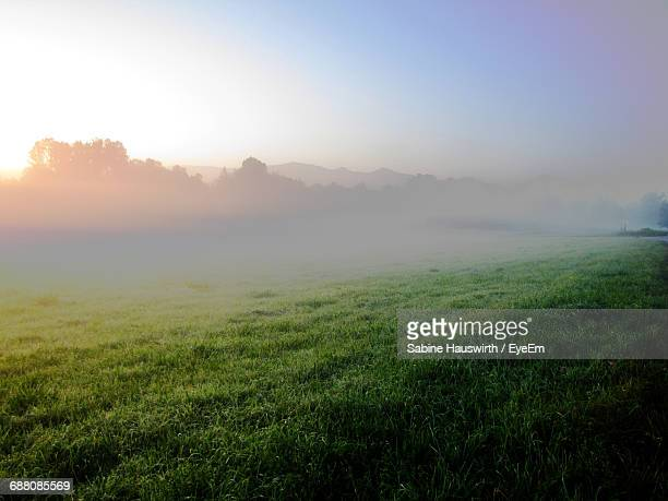 Grassy Field Against Sky During Sunrise