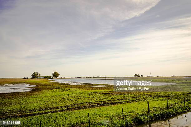 grassy field and pond against cloudy sky - andres ruffo stock-fotos und bilder