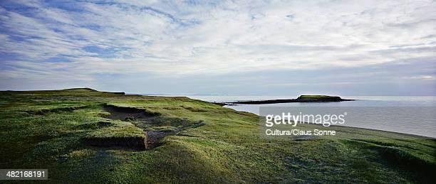 Grassy field at coastline