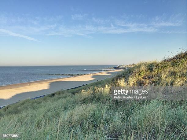 grassy field by sea against sky - middelburg netherlands stock pictures, royalty-free photos & images