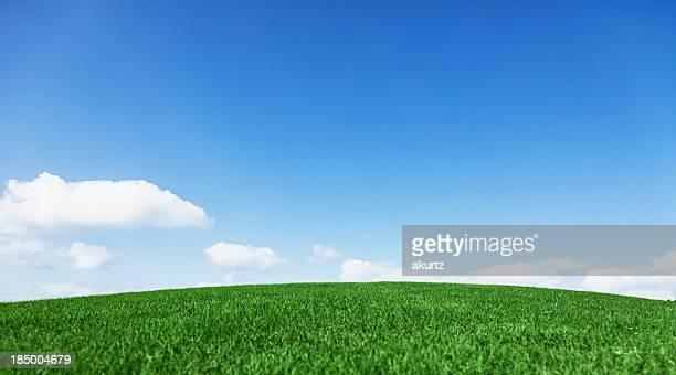 美しい緑豊かな丘の上の青い水平線