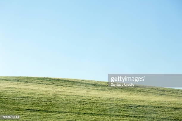 grassy hill in cordoba province - encosta imagens e fotografias de stock