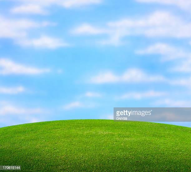 芝生ノール」