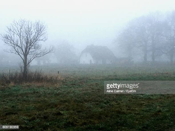 Grassy Landscape Against Sky During Foggy Weather