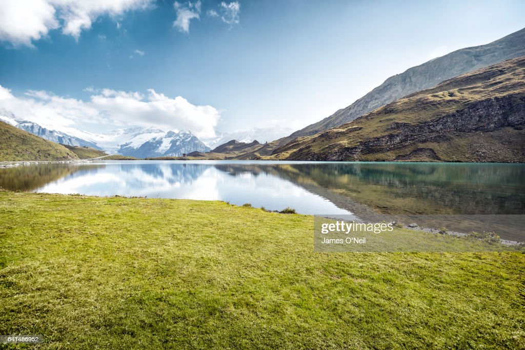 Grassy patch next to lake with mountain reflections : Stock-Foto