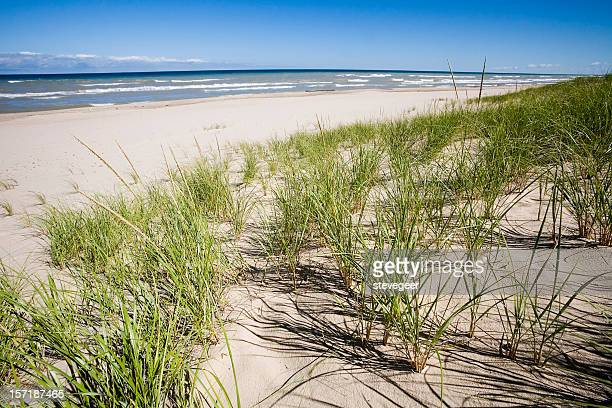 grassy sand dunes and lake michigan - indiana dunes national lakeshore stock photos and pictures