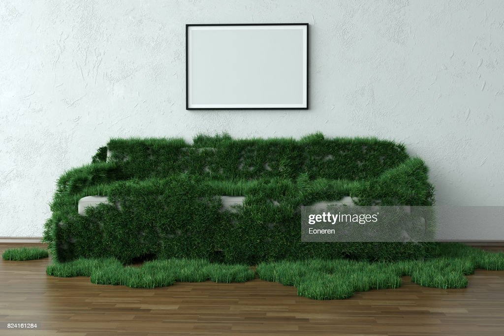 Grassy Sofa In Green House With Blank Frame : Stock Photo