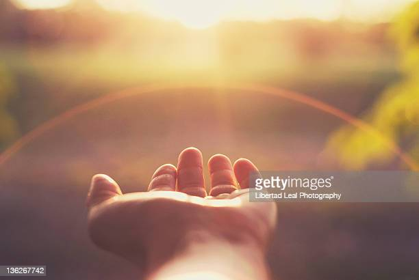 grateful - sunlight stock pictures, royalty-free photos & images