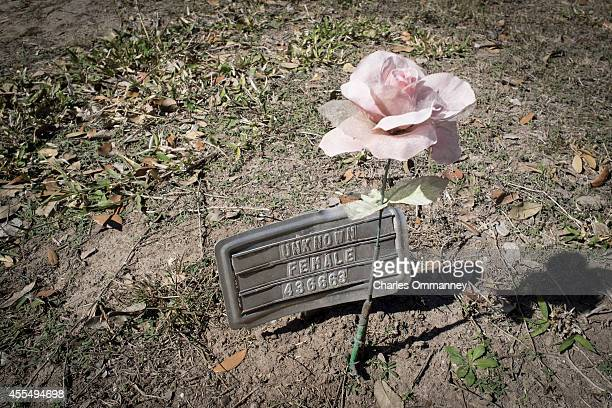 A grave marker marking unknown remains sits in a cemetery where a mass grave of illegal immigrants once was on July 24 2014 in Falfurrias TX The...