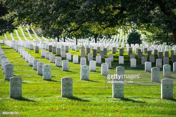 grave stones at arlington cemetery - arlington national cemetery stock pictures, royalty-free photos & images