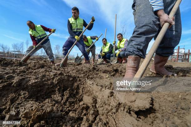 Gravediggers work at a cemetery to earn their living in Van Turkey on April 12 2017