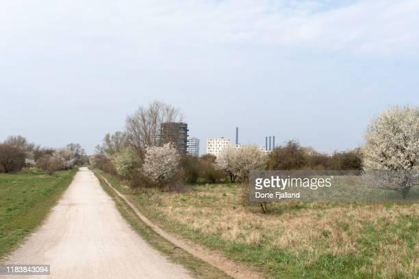 gravel path through a green area with a city skyline in the background - dorte fjalland fotografías e imágenes de stock
