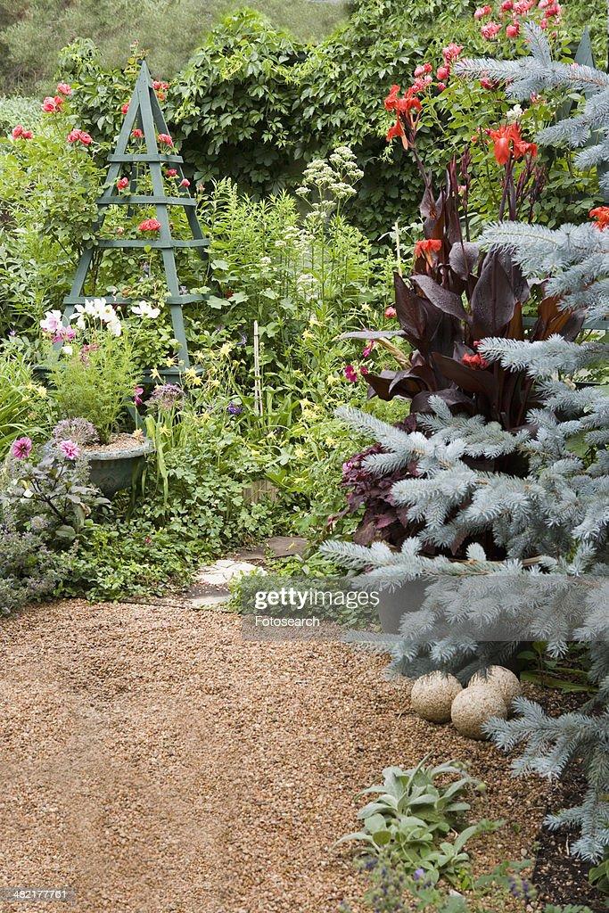 Gravel Path Wild Garden With Trellis : Stock Photo