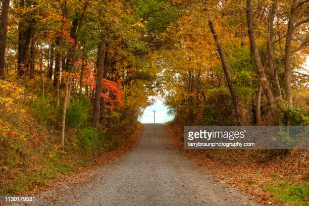 Gravel Road in the County