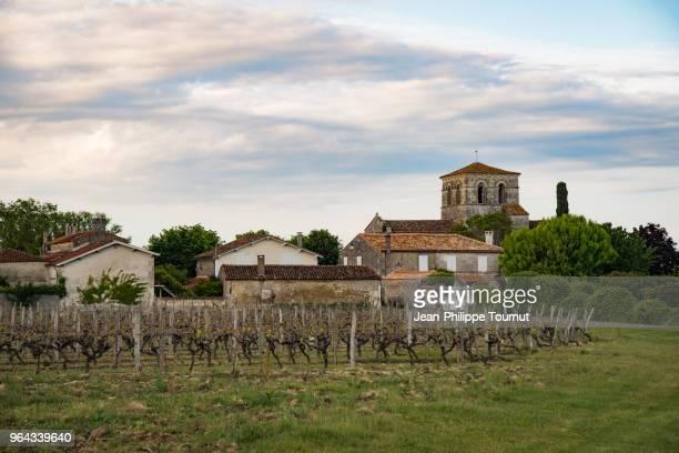 graves, a village near cognac, france - cognac - fotografias e filmes do acervo