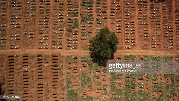 graves in a cemetery - coffin stock pictures, royalty-free photos & images