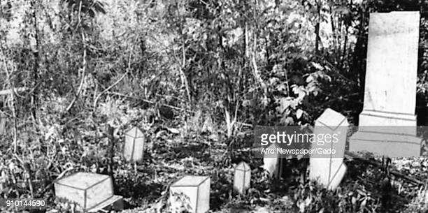 Gravestones among overgrown vegetation at the former Laurel Hill Cemetery a historically AfricanAmerican cemetery in the BelAir neighborhood of...