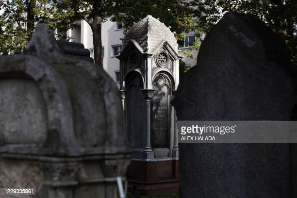 Gravestones are seen at the old Waehring Jewish cemetery in Vienna on October 18, 2020. - The Waehring cemetery has suffered from decades of neglect...
