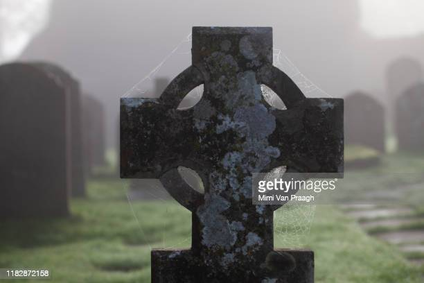 graveyard in the fog - crime and murder stock pictures, royalty-free photos & images