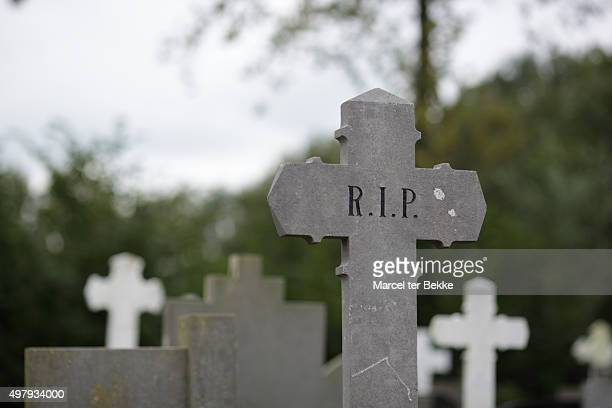 graveyard in the netherlands - rest in peace stock photos and pictures