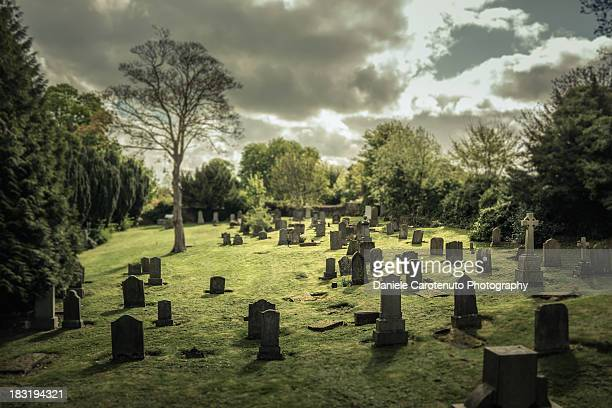 graveyard - cemetery stock pictures, royalty-free photos & images