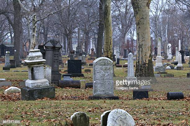 graveyard - sarcophagus stock pictures, royalty-free photos & images