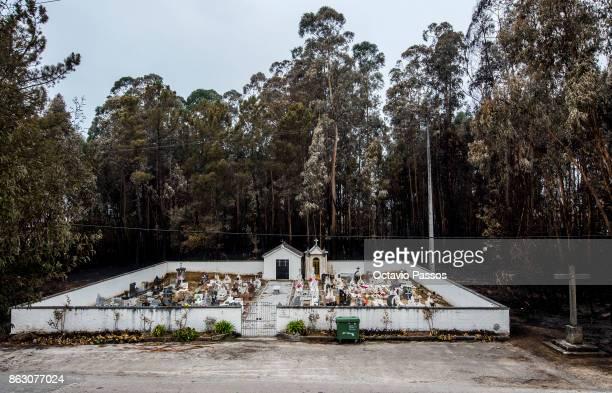 A graveyard resisted forest fires in the village of Tondela on October 19 2017 in Viseu Portugal Portugal's forest fires broke out on October 15 in...