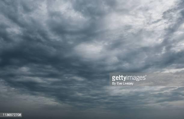 gray altocumulus clouds - céu tempestuoso - fotografias e filmes do acervo