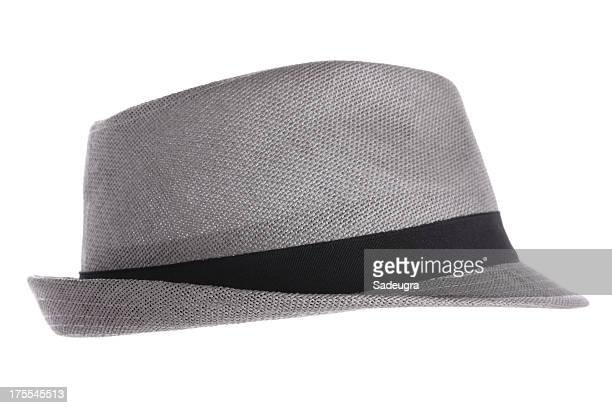 Gray Fedora-Hut