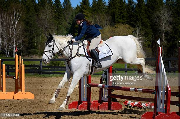 Gray horse jumping over a ramped oxer fence at an outdoor equestrian show competition