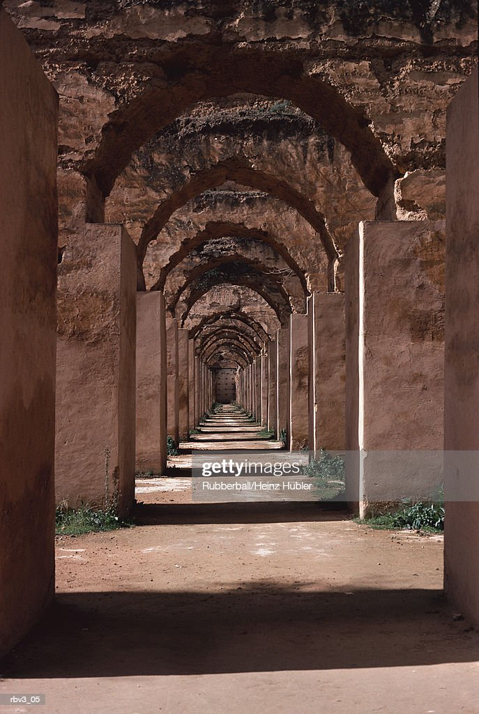 gray stone columns support stone arches as sun light shines between the archways on green plants : Stockfoto
