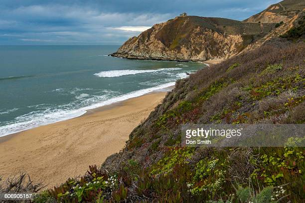 gray whale cove state beach - don smith stock pictures, royalty-free photos & images