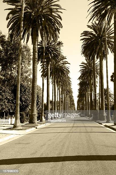 Grayscale image of Beverly Hills, California