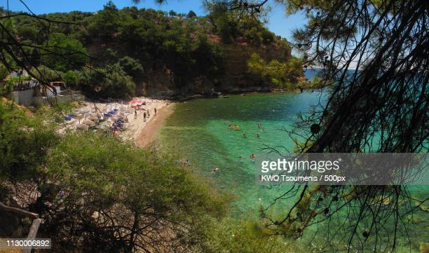 gre thassos arsanas branches pa jul 2016 by kwot - thasos stock photos and pictures